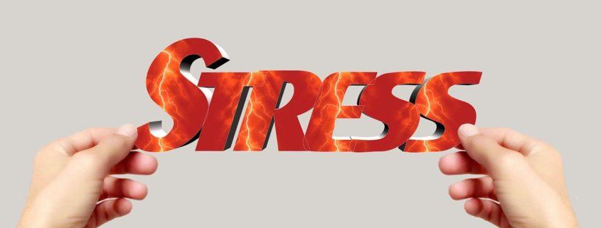 frank-ritter-messung-stress-objektiv messen-800x600